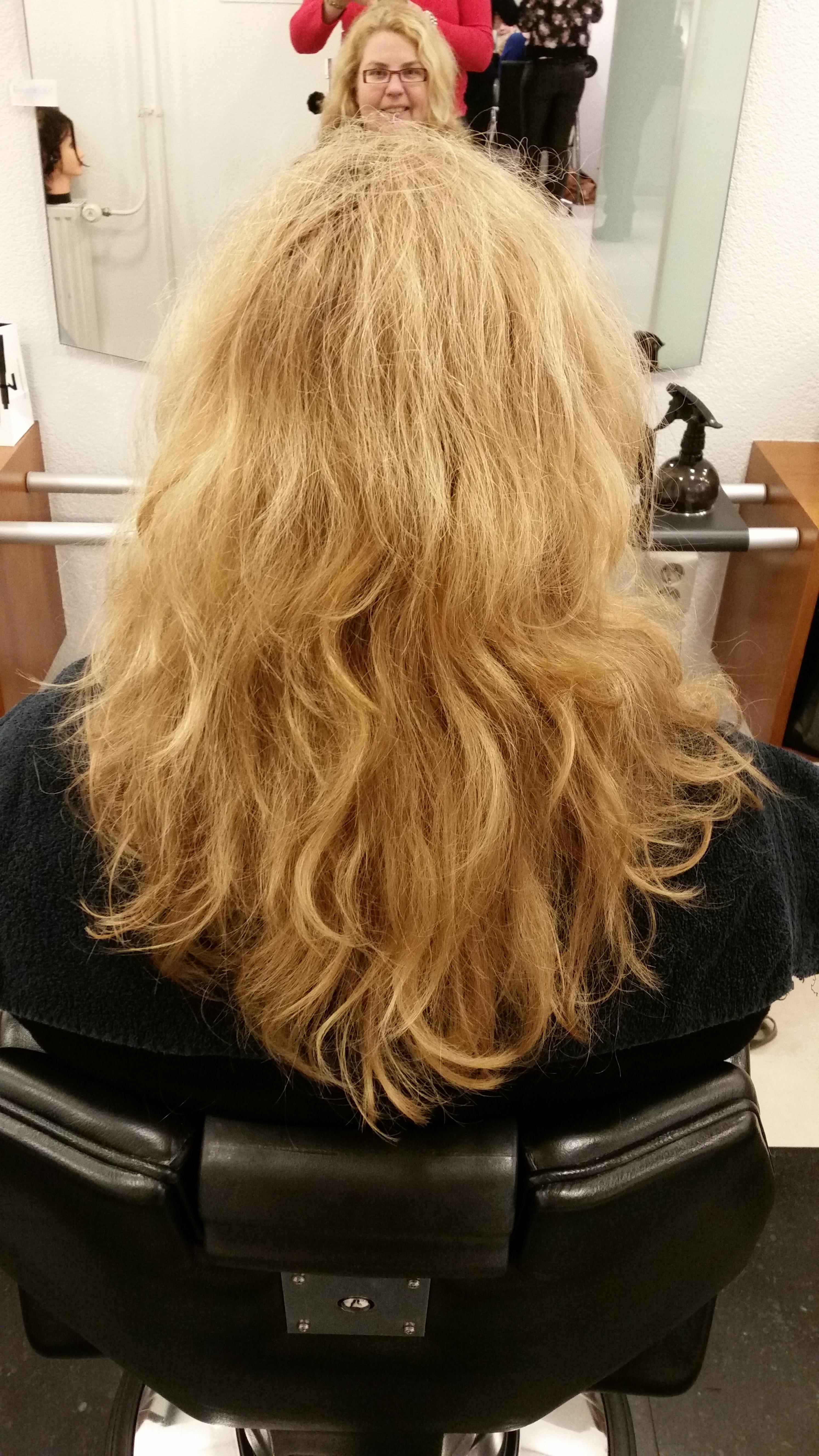 curlsys voor
